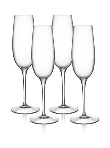 Luigi Bormioli Set of 4 Allegro 8-Oz Champagne Flute Glasses