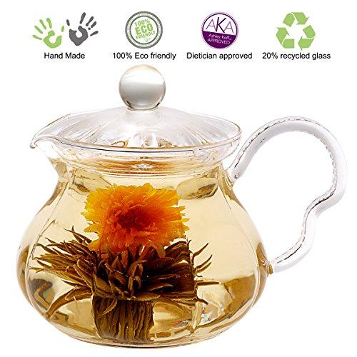 Tea Beyond GTP2005 Heat Resistant Glass Teapot Fairy 20-Ounce