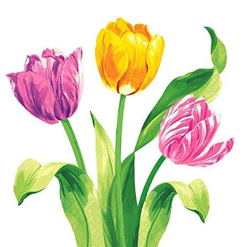Amscam 16 Count Bright Tulips Luncheon Napkins Multicolor