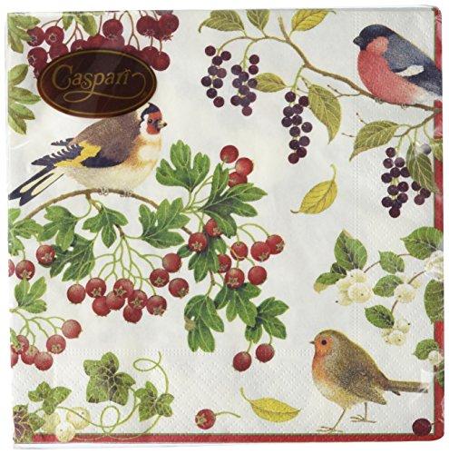 Entertaining with Caspari Winter Birds Luncheon Napkin Pack of 20