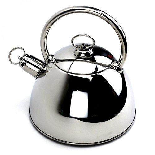 Whistling KettleStainless Silver Tea Kettle with LidSilver