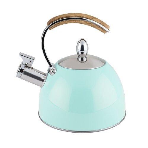 Whistling Tea Kettle Stainless Steel Light Blue Stovetop Tea Kettle Stainless
