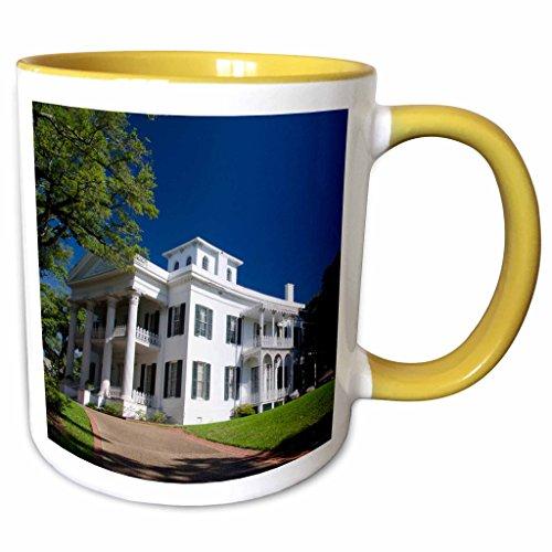 3dRose Danita Delimont - Houses - USA Mississippi Natchez Stanton Hall house - US25 CMI0002 - Cindy Miller Hopkins - 11oz Two-Tone Yellow Mug mug_144740_8