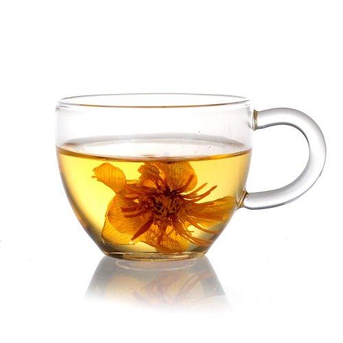 Xiazhi Handcraft Borosilicate Glass Tea Cups Set of 4 90ml