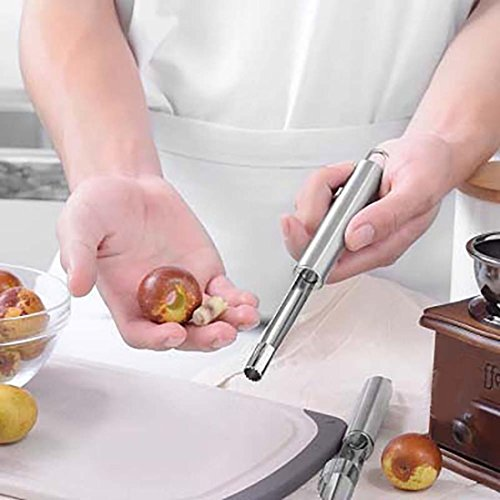 Transer Apple Corer Apple Corer Remover Stainless Steel Apple or Pear Core Remover Tool for Home Kitchen with Sharp Serrated Blade Sliver Diameter 043 Inches