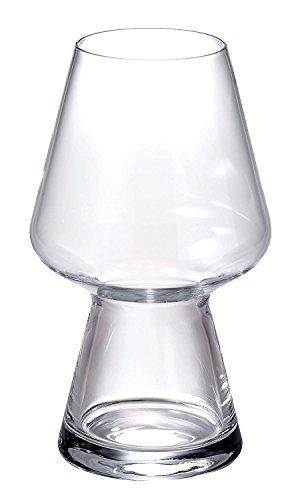 Luigi Bormioli Birrateque Craft Beer Glasses Seasonal Set of 2 2325 oz Clear