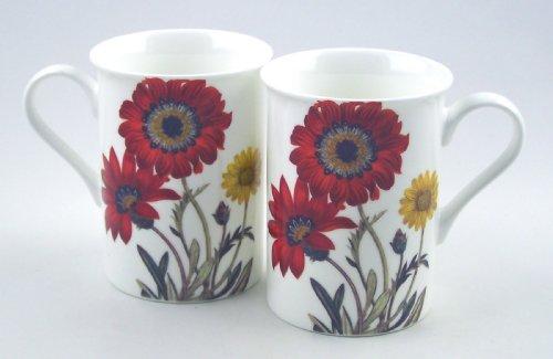 Premium Fine China Mugs - Set of Two - Gerbera Daisy Chintz - England