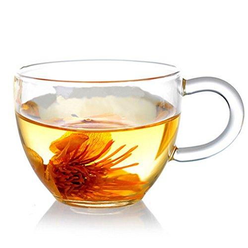 Xenics Tea Cups Borosilicate Glass Flower Tea Cups Ultra Clear-Set of 6