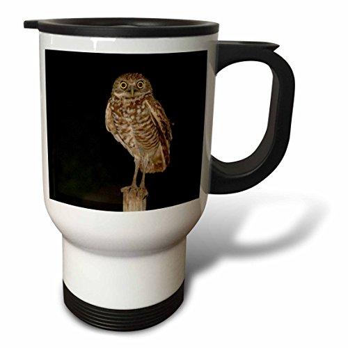 3dRose Mama Owl Travel Mug 14-Ounce