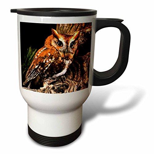 3dRose Owl Travel Mug 14-Ounce Stainless Steel