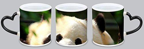 DKLZY Hot Cute Panda Customized Design Black Magic Color Changing Cup Coffee Mug Creative Milk Mug Personalized Tea Cup