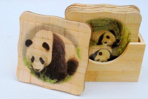 Bamboo Coaster Set - Pandas