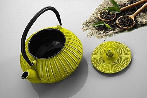 Cast İron Teapot Green Teapot Colourful Teapot Hand Painted Teapot Gift