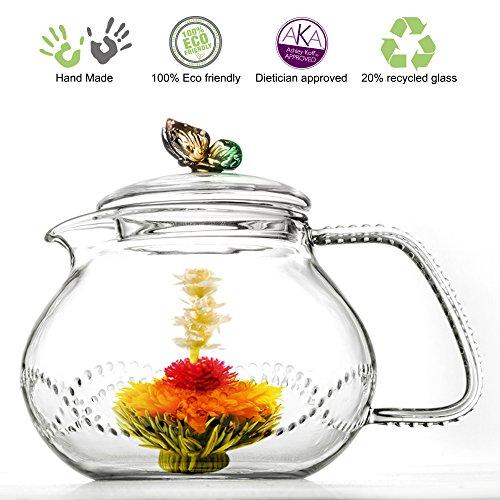 Tea Beyond Clear Glass teapot Rainbow Butterfly 24 oz710ml non drip heat resistant