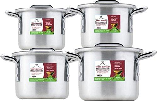 Wees Beyond Small Aluminum Stock Pot Set of 4 2 Qt 35 Qt 55 Qt 8 Qt Silver