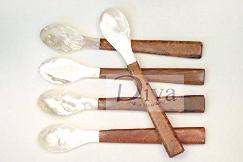 Set of 5 PCS Mother of Pearl Caviar Sea Shell Spoon Wood Spoon Tea Spoon Coffee Spoon pepper salt Spoon