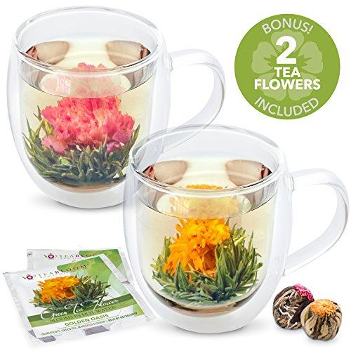 Teabloom Large Insulated Glass Mugs Blooming Tea Flowers Gift Set Set of 2 Mugs  2 Tea Balls - 18 oz Double Wall Borosilicate Glass Mugs 2 Gourmet Blooming Green Tea Flowers