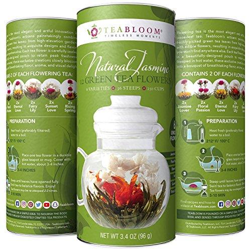 Teabloom Green Tea Flowers – Hand Tied Green Tea Leaves  Jasmine Blossoms Flowering Tea Creations – Blooming Tea Gift Set – 12-Pack 36 Steeps Makes 250 Cups