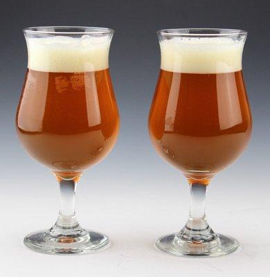 Tulip Beer Glass Set by TrueBeercom