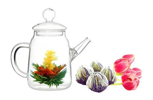 Tea Beyond Glass Teapot and Tea Set 16 oz Fab Bloom 2cts