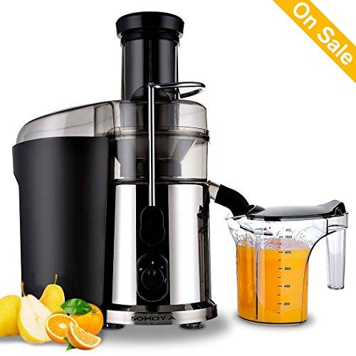 Electric Juicer Masticating Juicers Fruit and Juice Extractor Juicer with 1L Custom Juice Cup Fruit Squeezer 850Watt Juice Maker Stainless Steel