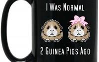 i-was-normal-2-Guinea-Pigs-Ago-Large-Black-Mug-10.jpg